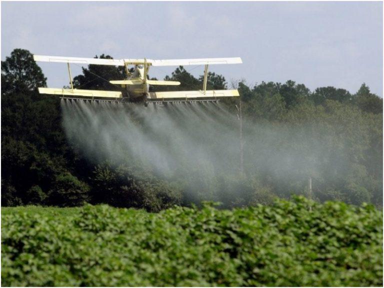 Agrotóxicos: revelan que en Argentina se comercializan más de 100 productos prohibidos en otros países